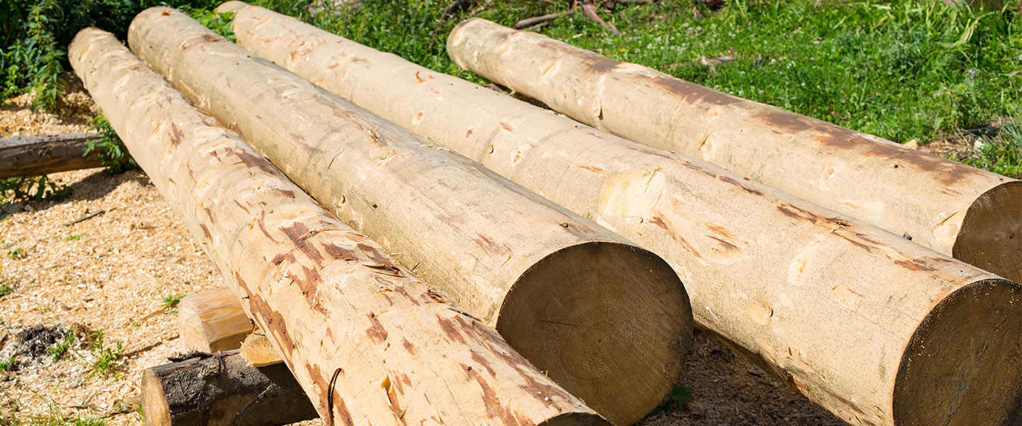 lumber for log cabin kit being stored on site